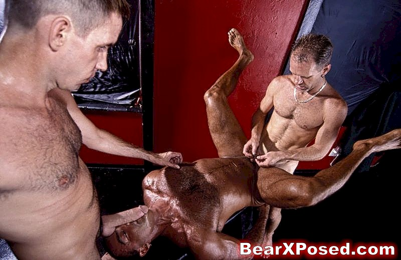 Bear X Posed Hot Hairy Muscular Gay Bear Porn!